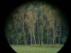 polowanie-6