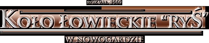 Slownik Lowiecki Polsko Angielski Kolo Lowieckie Rys Nowogard